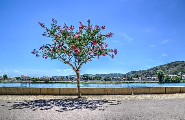 Découvrir les quartiers de Valence : Châteauvert, Danton, Fontbarlette, Briffaut